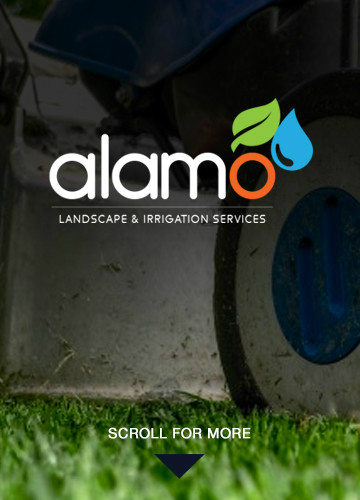 Alamo Landscape and Irrigation Services Lawn Care Specialists